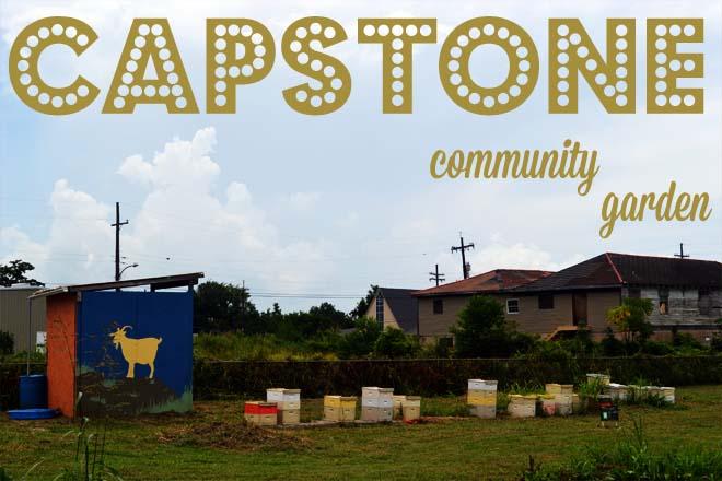 The Farm at Capstone